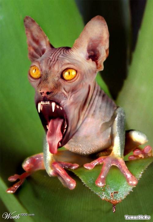 мутанты фото звери