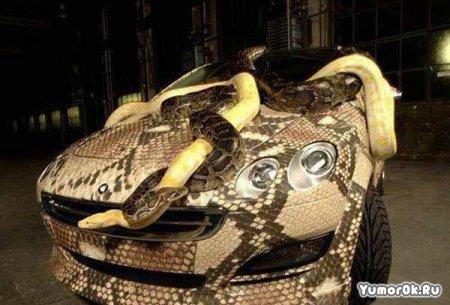 Змеиный тюнинг