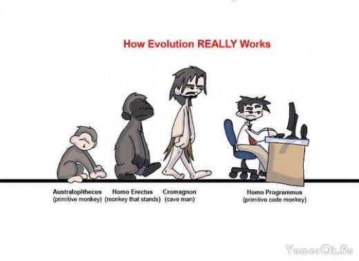 Очень интересные картинки эволюции)) Ниже Вы сможете увидеть разнообразные варианты...