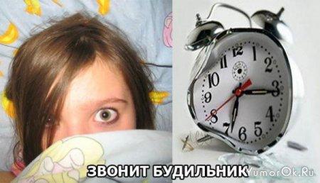 Разница между мужским утром и женским