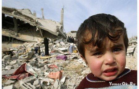 Возвращение в Палестину