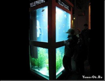 Телефонный аквариум