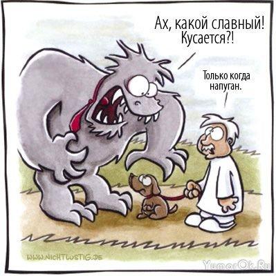 http://yumorok.ru/uploads/posts/2009-03/1237462747_img_10520920_54_17.jpg