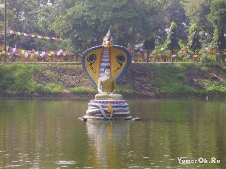 Священные бодхгайские сомы