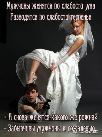 Свадебно - семейная подборочка