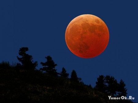 Очень красивые фотографии Луны
