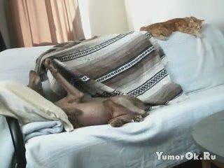 Отдай одеяло