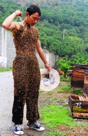 Одежда из пчел