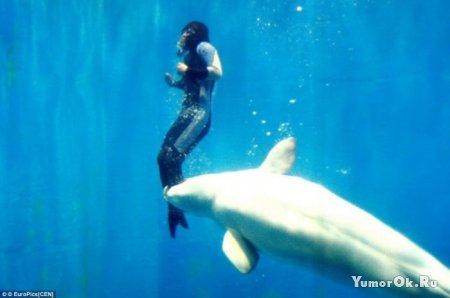 Дельфин спас человека