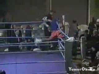Неадекватный боксер