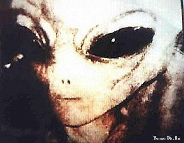 Реальные инопланетяне.