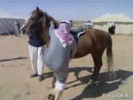 Не выдержала лошадь