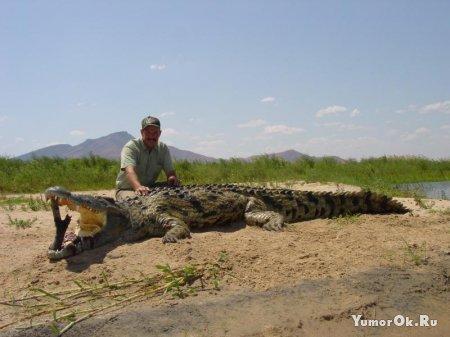 Про крокодила-людоеда
