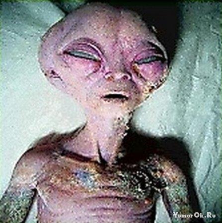 Жесть реальные инопланетяне