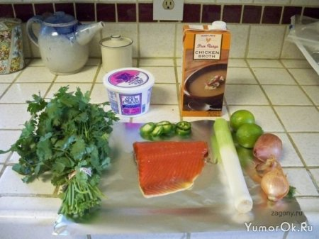 Можно ли приготовить рыбу в посудомоечной машине