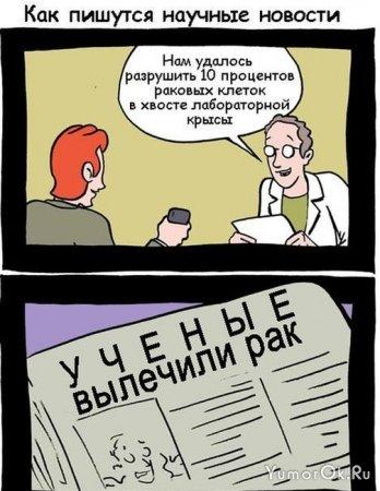 Работа желтой прессы