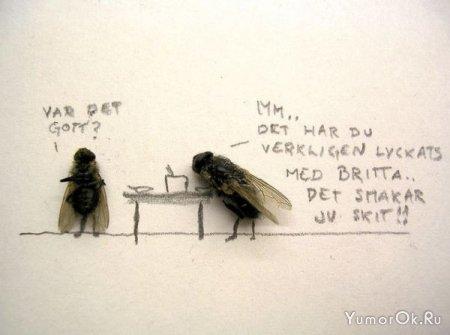 Вторая жизнь мух
