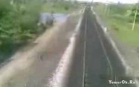 Коровы vs поезд