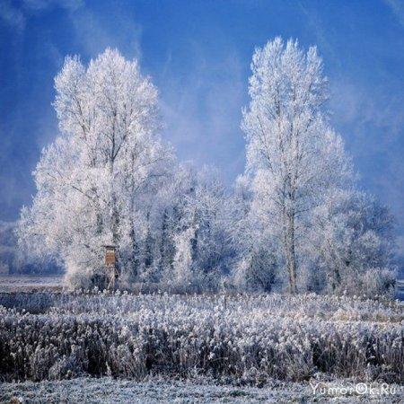 Зима уже скоро