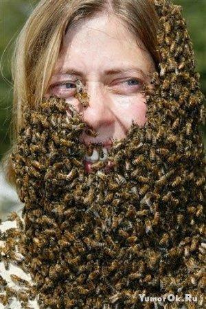 Они не бояться пчёл