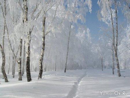 А ведь уже зима